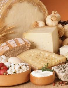 Cheese LR
